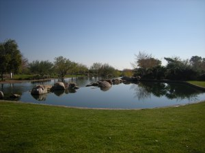 One of the fishing ponds in Anthem's Community Park