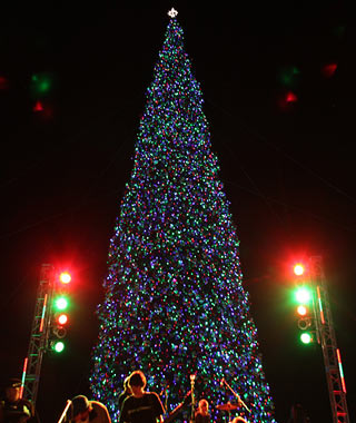 Anthem Christmas Tree Lighting. - Anthem Christmas Tree Lighting...