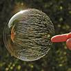 Picture of bubble